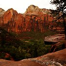 Emerald Pools, Zion National Park..looking out by Wayne Cook