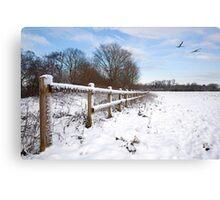 Winter on Desborough Island Canvas Print