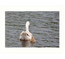 Mum and I: White Gosling and female goose Art Print