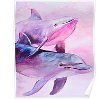 Dolphins pair Poster