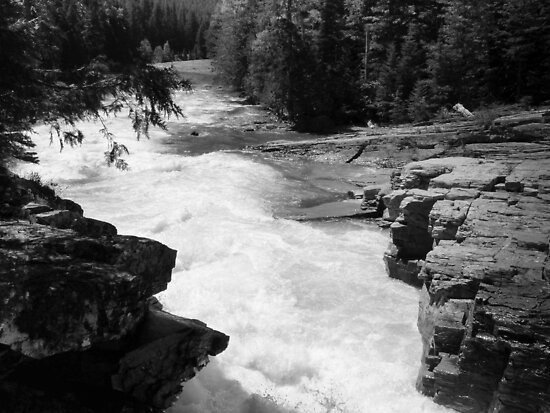 Mountain Stream in Black & White by Lucinda Walter