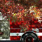 Autumn Reds 2 by Jon  Johnson