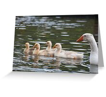 Greenhill Goslings: White geese on Bingley Canal Greeting Card