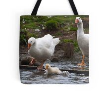 Splash: Young gosling with adult geese Tote Bag