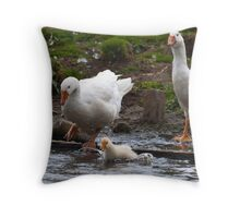 Splash: Young gosling with adult geese Throw Pillow