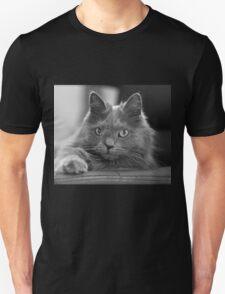 Crookshanks T-Shirt