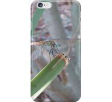 Dragon Flyboy iPhone Case/Skin