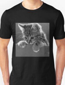 Kitten in a box T-Shirt