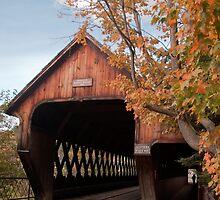 Woodstock Middle Bridge by Sue Knowles