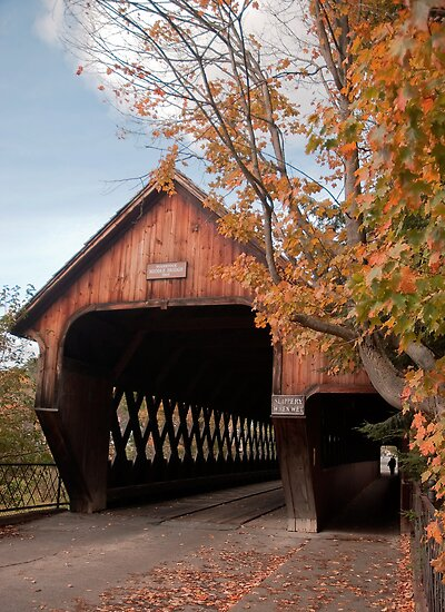 Woodstock Middle Bridge by Sue Knowles