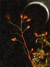 Witch Moon by RC deWinter
