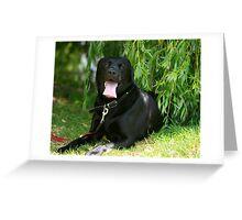 casper in the shade Greeting Card
