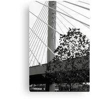 This is our bridge Canvas Print