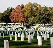 Arlington National Cemetery by Carol Bock
