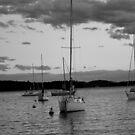 Lake shore by licoricetea
