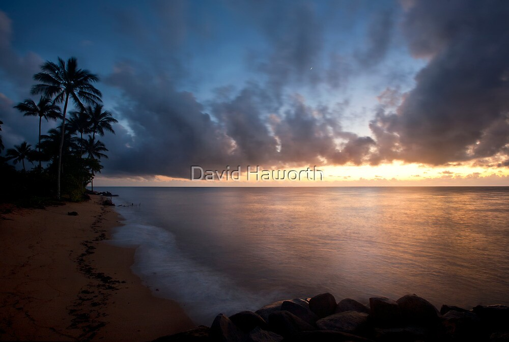 Another Dawn in Paradise by David Haworth