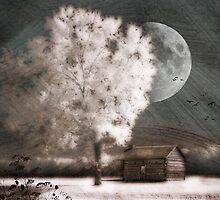 Evening Draws Nigh by Barbara Simmons