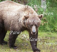Paws N Claws Banner Challenge Submission by akaurora