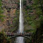 SUMMER SPECTATOR'S AT MULTNOMAH FALLS by Charlene Aycock