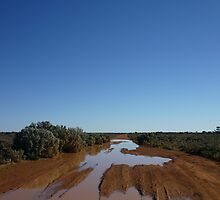 Dirt  Road on the Nullabor by feelingpaulie