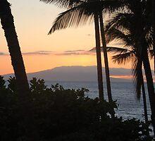 Pink Sunset on Maui by markrt