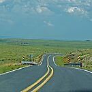 Road, Road on the Range by WolfPause