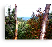 Cape Breton Autumn Canvas Print