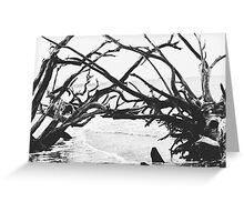 Adrift and Reaching Photo Greeting Card