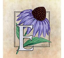 E is for Echinacea Photographic Print