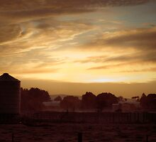 Silo at dawn by Jo  Hall