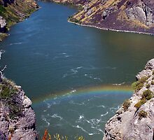 SCENIC SNAKE RIVER by Charlene Aycock