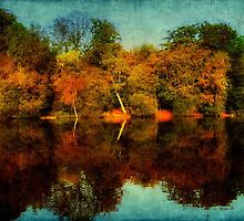 Nature's Mirror ©  by Dawn M. Becker
