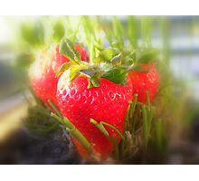 Strawberry Summer Photographic Print
