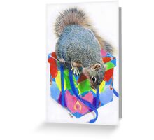 Curiosity Greeting Card