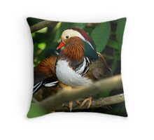 Show of colors Throw Pillow