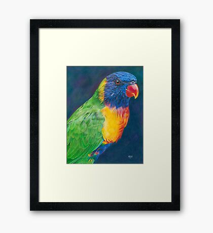 Rainbow Lorikeet Framed Print