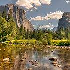 Yosemite National Park by Cathy Cormack