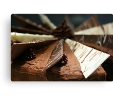 Delicious, gooey, tempting chocolate cake Canvas Print