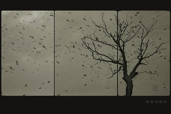 ashes by Nikolay Semyonov
