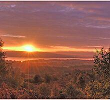 Autumn Dawn by Derek Dobbie