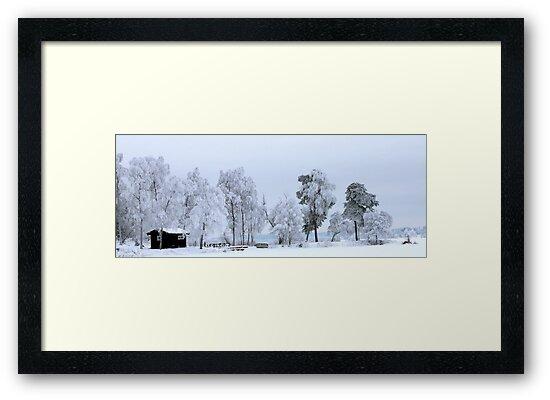 Winter landscape - Sweden by LadyFi