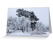 Silken painting - winter Greeting Card