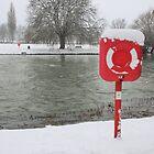 Anyone fancy a swim? by Ian Salter