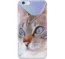 Wedgewood Blue iPhone Case/Skin