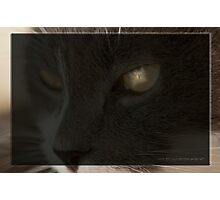 He Sees All © Vicki Ferrari Photographic Print