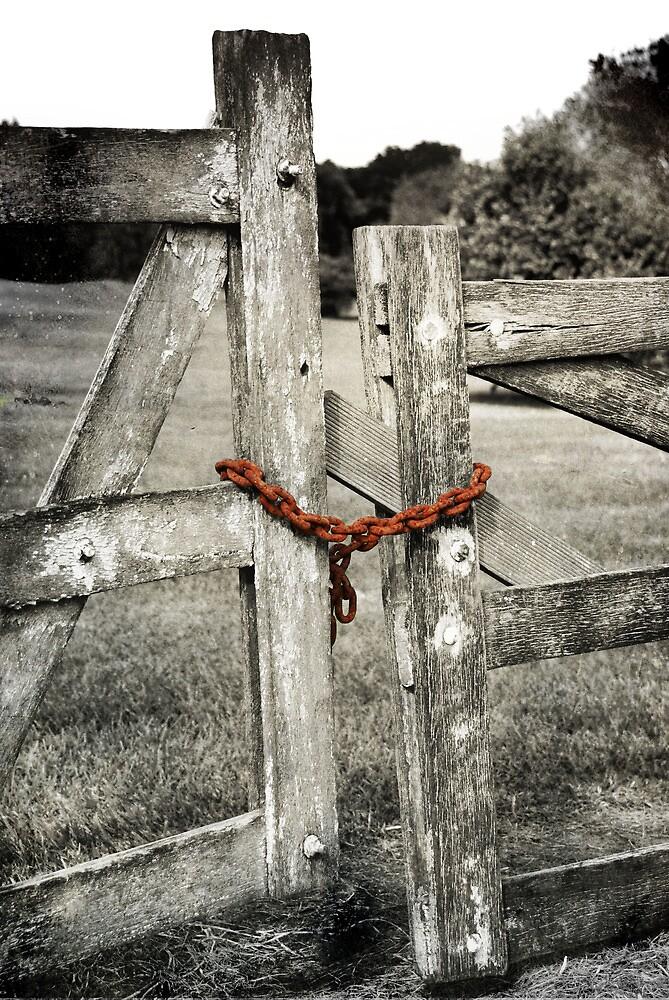 Please Shut The Gate by Carol Knudsen