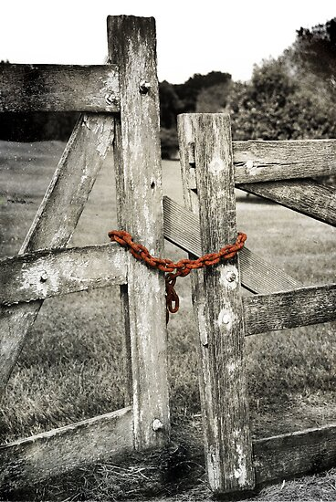 Please Shut The Gate by Carol Knudsen