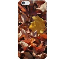 Colourful Fallen Leaves iPhone Case/Skin