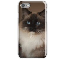 Sully Monster cat  iPhone Case/Skin