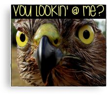 What you looking at? Canvas Print